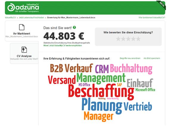 Was Bin Ich Wert Lebenslauf Analyse Startet In Deutschland